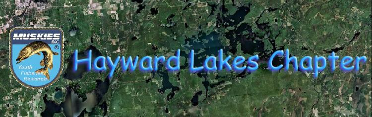 Link to Hayward Lakes Chapter of Muskies Inc.
